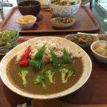 【閉店】Apsara cafe(アプサラカフェ)で野菜いっぱいカフェランチ